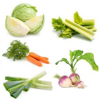 preparado verduras cocido